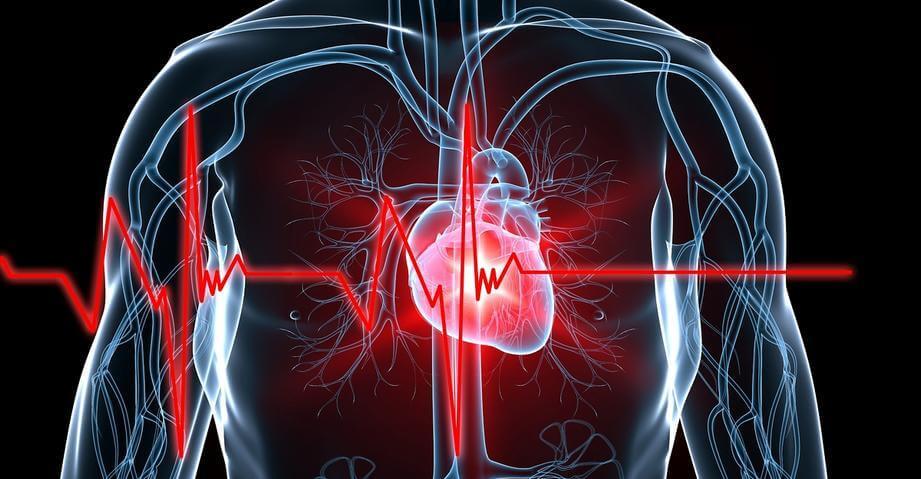 Биометрическая система идентифицирует людей попараметрам сердца